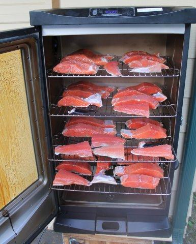 High tech salmon smoking the outdoor line blog for Smoked fish in masterbuilt electric smoker