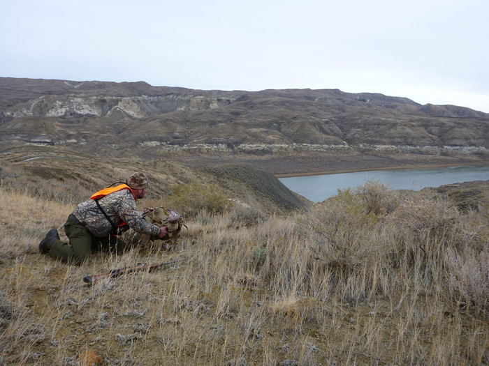 Spot and Stalk Mule Deer Hunting