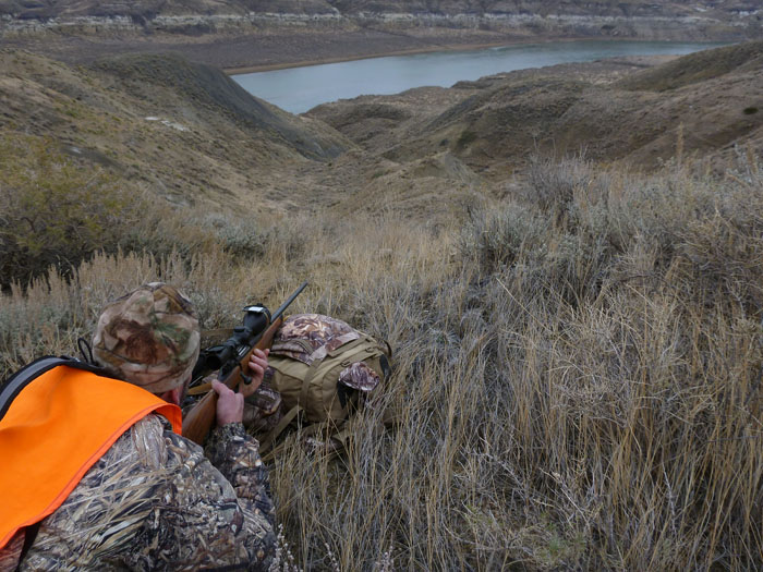 Mule deer hunting in open country means long shots - photo by Rob Endsley