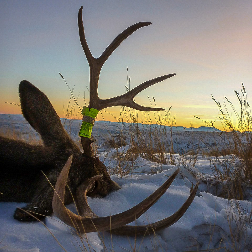 A Montana Late Season Sunset-Rob Endsley