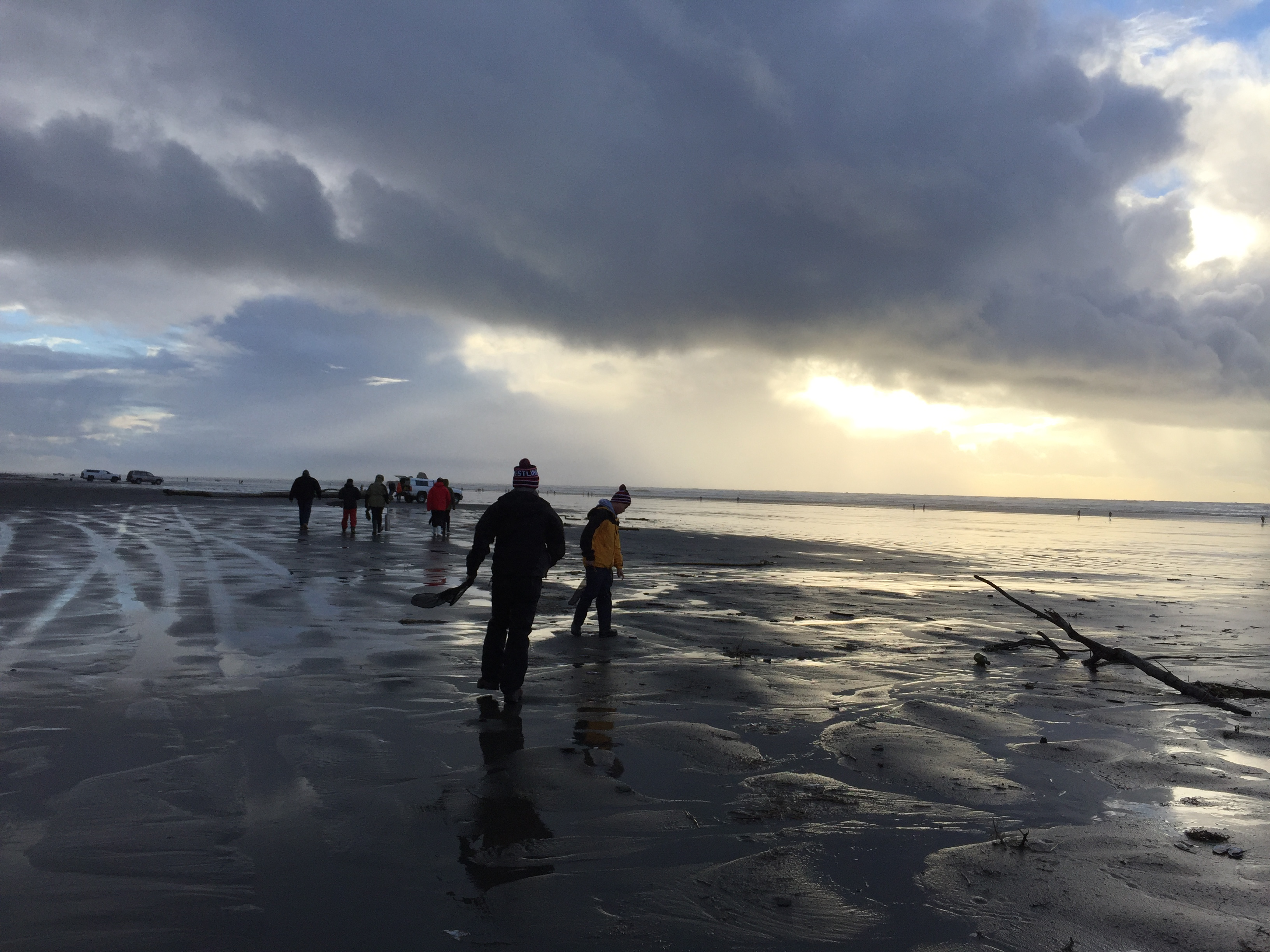 Salmon fishing the outdoor line blog digging is open during pm low tides this sunday jan 28 low tide is minus 04 feet at 406 pm at mocrocks monday jan nvjuhfo Gallery